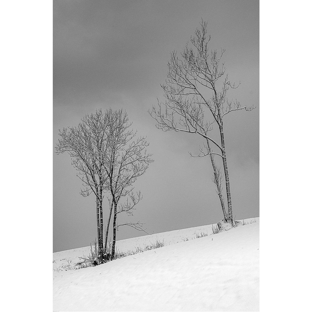 """13. Hemetsberger Florian - """"Winterruhe"""""""