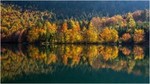 11 Herbert Hutflesz - Herbst