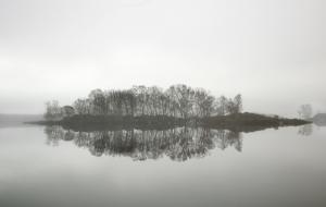 Lone Simplicity
