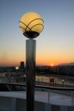 Der frühe Morgen fängt den Vogel